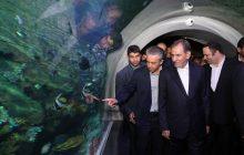 گزارش تصویری/ افتتاح پروژه های منطقه آزاد انزلی توسط معاون اول رئیس جمهور