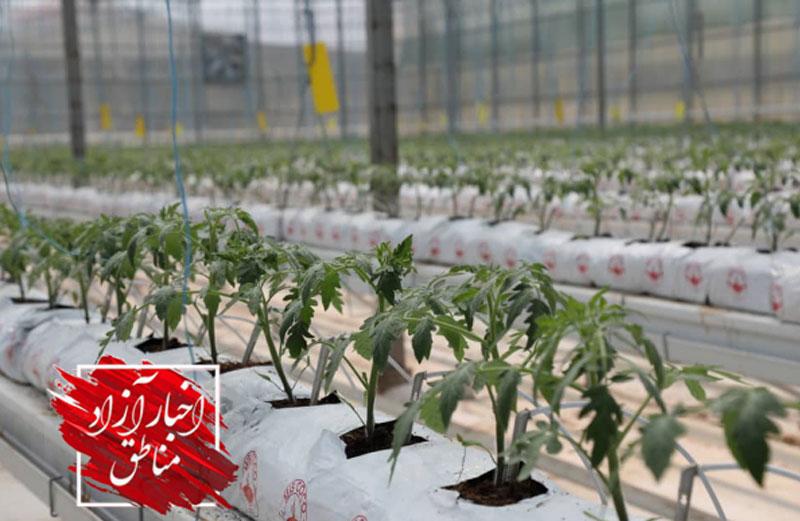 افتتاح یک واحد کشاورزی گلخانهای در منطقه آزاد ارس همزمان با هفته دولت