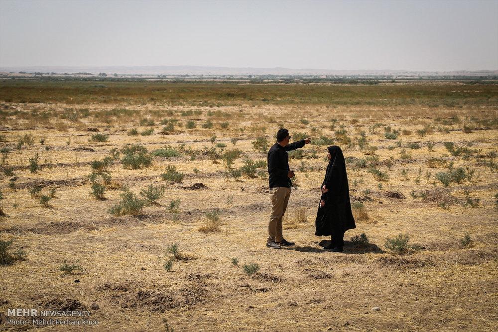 میم مثل «مین» مثل «مادرِ غمدار»؛ مینها هنوز جان میگیرند - خبرگزاری مهر | اخبار ایران و جهان