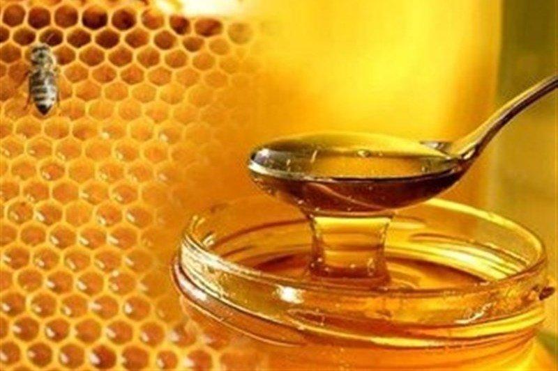 فرازوفرودهای صنعت زنبورداری/ بازارهای جهانی چشمبهراه عسل ایرانی - خبرگزاری مهر | اخبار ایران و جهان