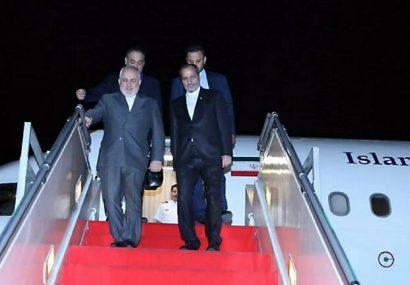 ظریف وارد تهران شد