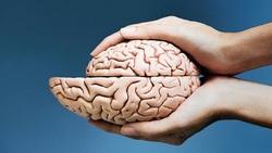 علائم کوچک شدن مغز چیست؟